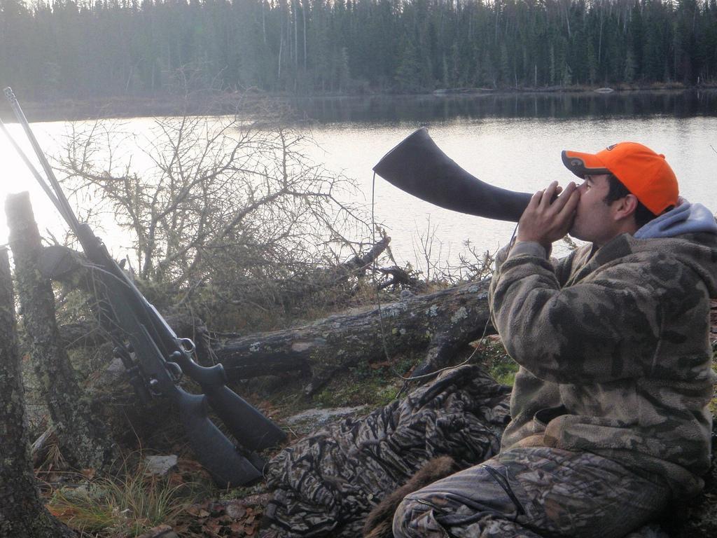 moose-calling-jacson-lodge-mb-med